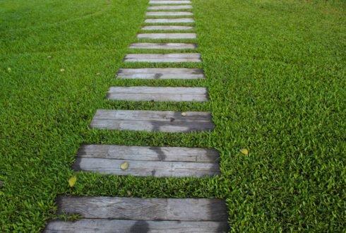 Trawnik – jak uzyskać efekt murawy