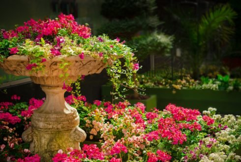 Rabata kwiatowa – jak założyć