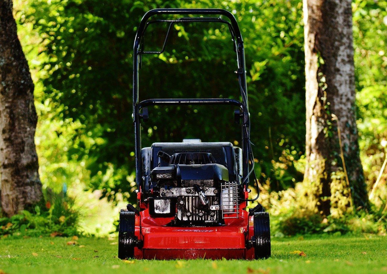 Pielęgnacja trawnika – podstawowe narzędzia