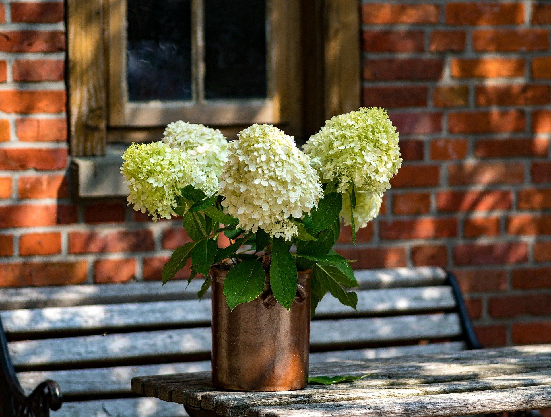 5 fajnych dekoracji na gorące letnie dni
