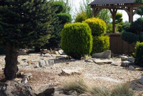 Kamienie w ogrodzie – pomysły i zastosowanie